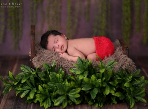 newborn_photo_by_parul_and_ankur00116