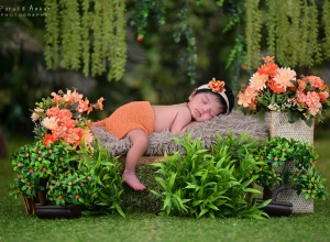 newborn_photo_by_parul_and_ankur00141