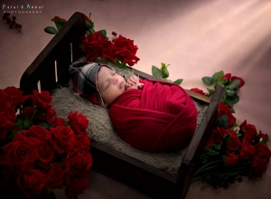 newborn_photo_by_parul_and_ankur00153
